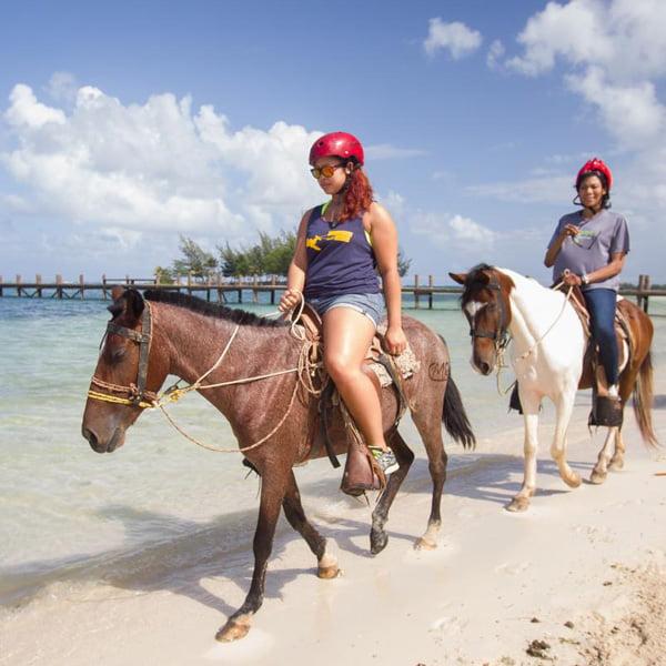 http://roatan-guavagrove.com/wp-content/uploads/2016/05/beach-horseback-ride-and-swim-mahogany-bay-isla-roatan-3.jpg