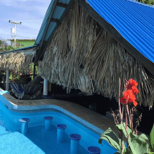 http://roatan-guavagrove.com/wp-content/uploads/2017/01/House-PoolBar-1-540x540.png
